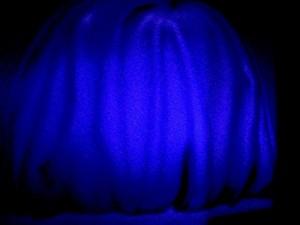bluefritzlang
